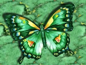 Green-Butterfly_High_Resolution_Wallpaper_animalplanethd.com_